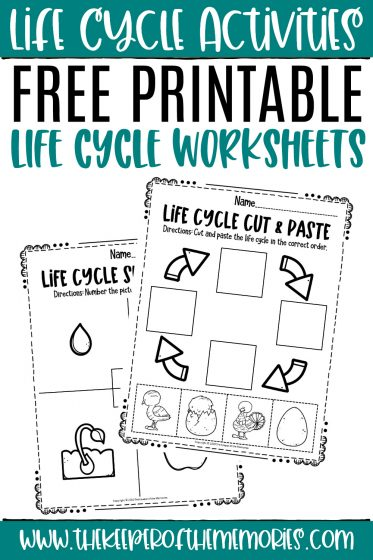 collage of life cycle worksheets with text: Life Cycle Activities Free Printable Life Cycle Worksheets