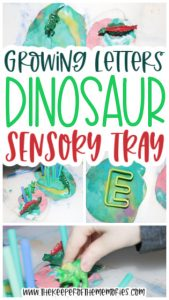 collage of dinosaur sensory tray images with text: Growing Letters Dinosaur Sensory Tray