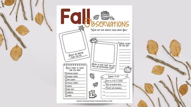 Fall Observations printable surrounded by leaves and twigs