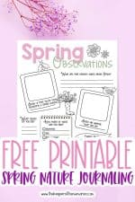 Free Printable Spring Nature Journaling for Kids