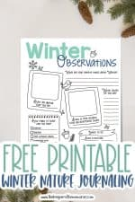 Free Printable Winter Nature Journaling for Kids