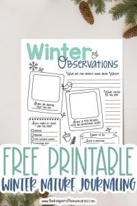 winter nature journaling for kids printable surrounded by pinecones and pine branches with text: Free Printable Winter Nature Journaling