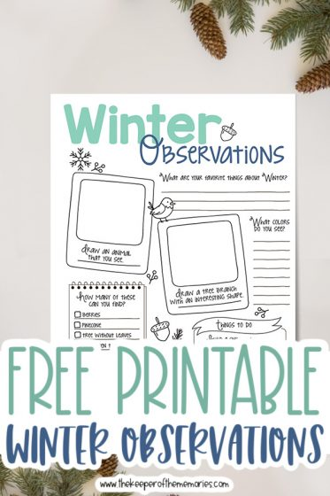 winter nature journaling for kids printable surrounded by pinecones and pine branches with text: Free Printable Winter Observations