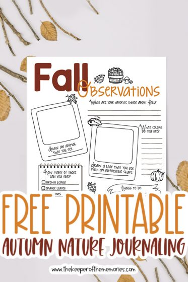 fall nature journaling for kids surrounded by twigs and leaves with text: Free Printable Autumn Nature Journaling