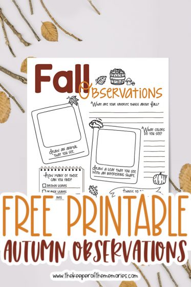 fall nature journaling for kids surrounded by twigs and leaves with text: Free Printable Autumn Observations