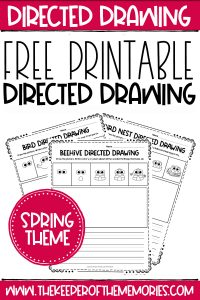 spring how to draw worksheets with text: Directed Drawing Free Printable Directed Drawing Spring Theme