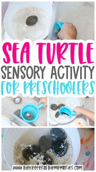 collage of sea turtle activity images with text: Sea Turtle Sensory Activity for Preschoolers