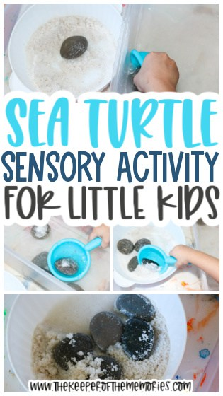 collage of sea turtle activity images with text: Sea Turtle Sensory Activity for Little Kids