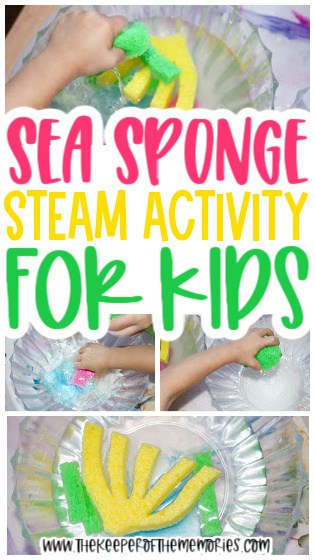 collage of sea sponge activity images with text: Sea Sponge STEAM Activity for Kids