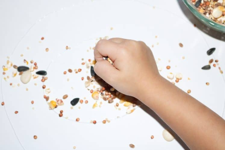 preschooler adding seeds to seed mosaic craft