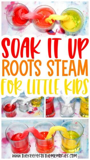 Roots Preschool STEAM