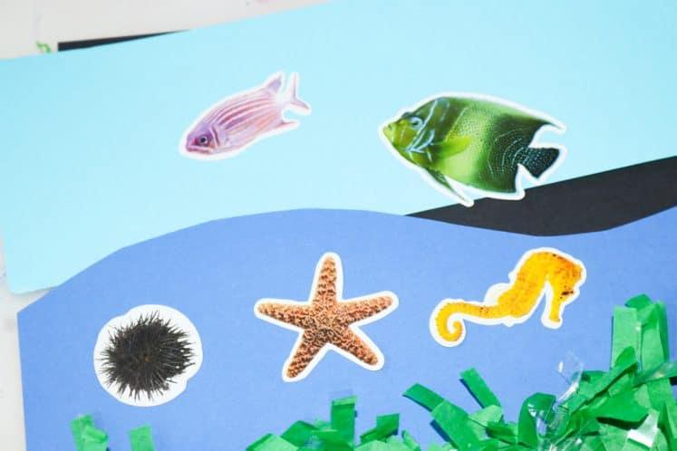 ocean animal stickers on ocean zones collage