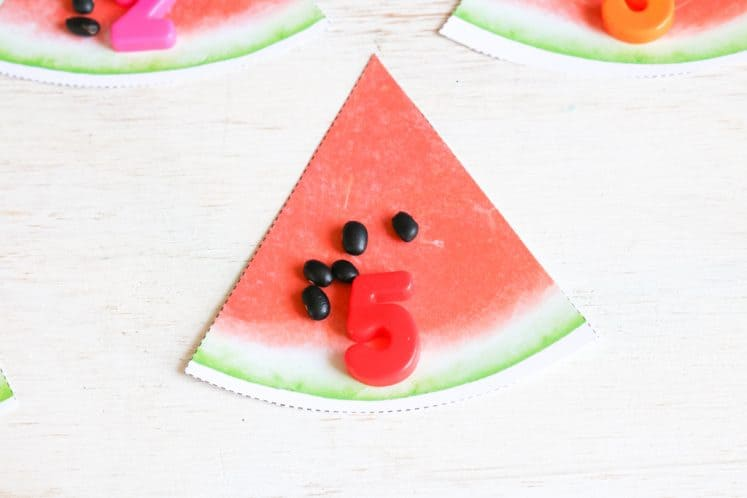 paper watermelon slice with a handful of black beans and magnetic number five