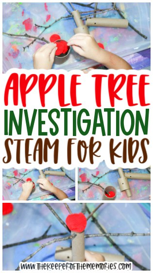 collage of apple STEAM images with text: Apple Tree Investigation STEAM for Kids